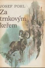 Pohl: Za trnkovým keřem, 1985