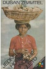 Zbavitel: Jedno horké indické léto, 1981