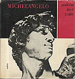 Michelangelo Buonarroti: Michelangelo, 1964