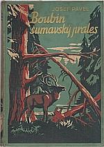Pavel: Boubín, šumavský prales, 1938