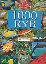 : 1000 ryb, 2008