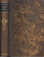 Fleischner: Chrám práce, 1919